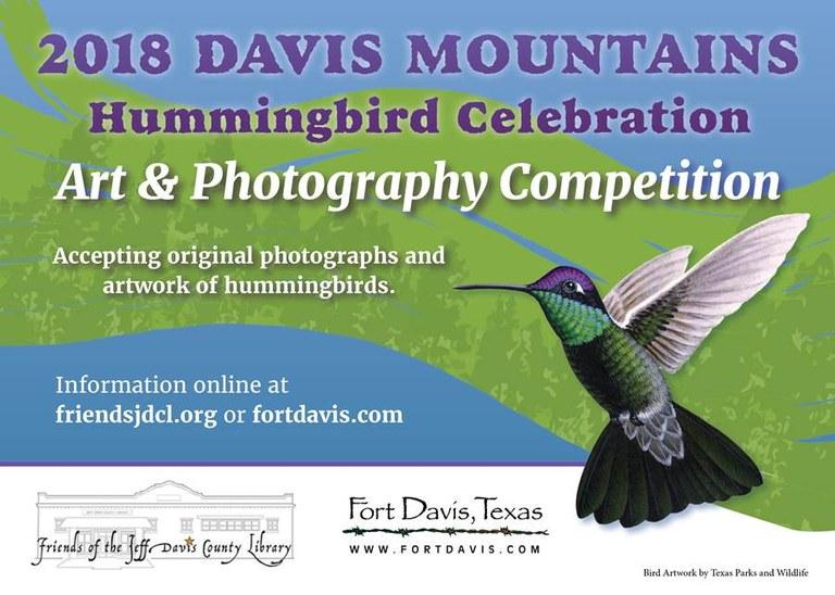 hummingbird front.jpg